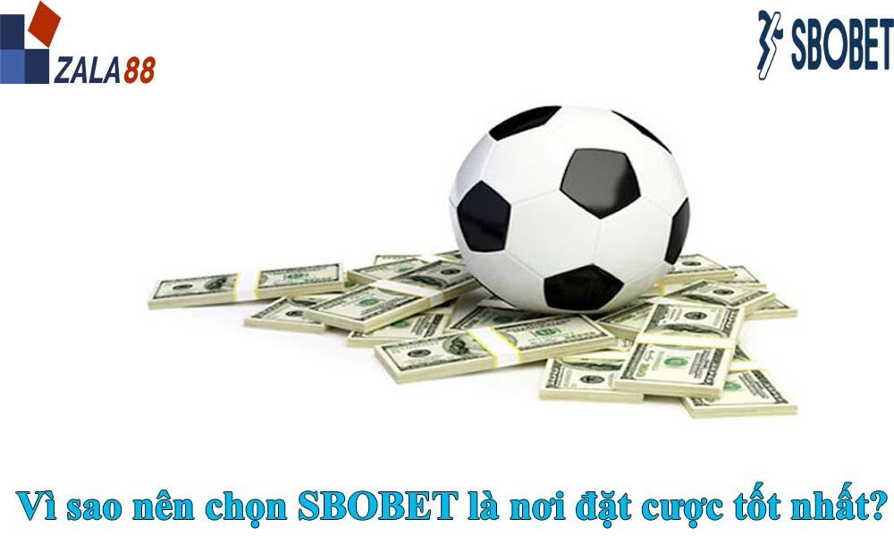 Vì sao nên chọn SBOBET là nơi đặt cược tốt nhất?